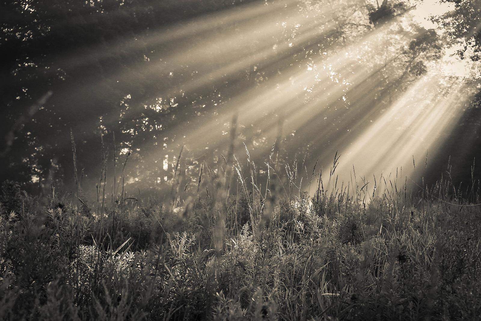 sunrise_blog_1.jpg