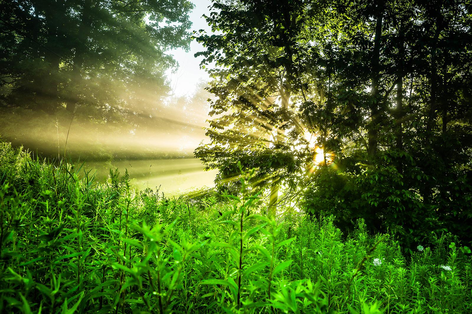 sunrise_blog_6.jpg