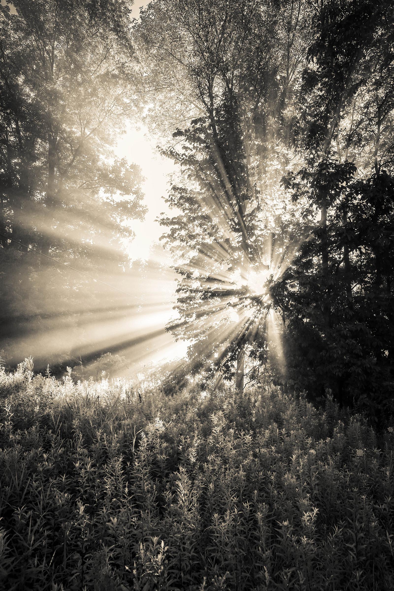 sunrise_blog_4.jpg