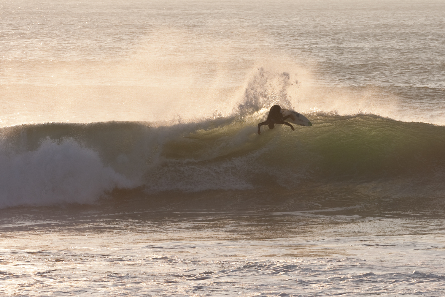 Backlit Fistral