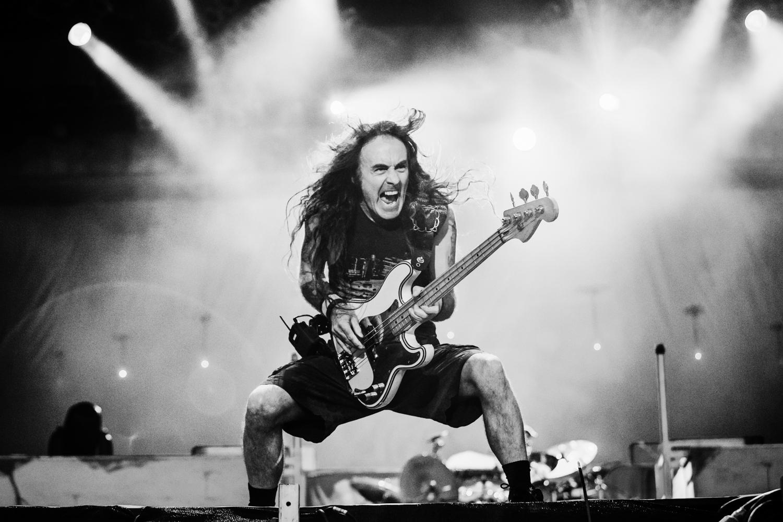 Steve Harris / Iron Maiden