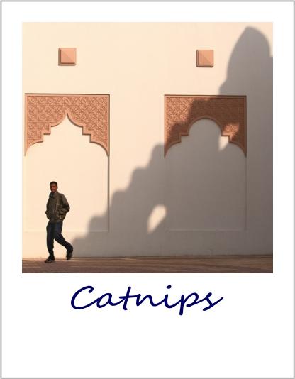 Published - Catnips.jpg