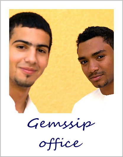 Published - Gemsip Office.jpg