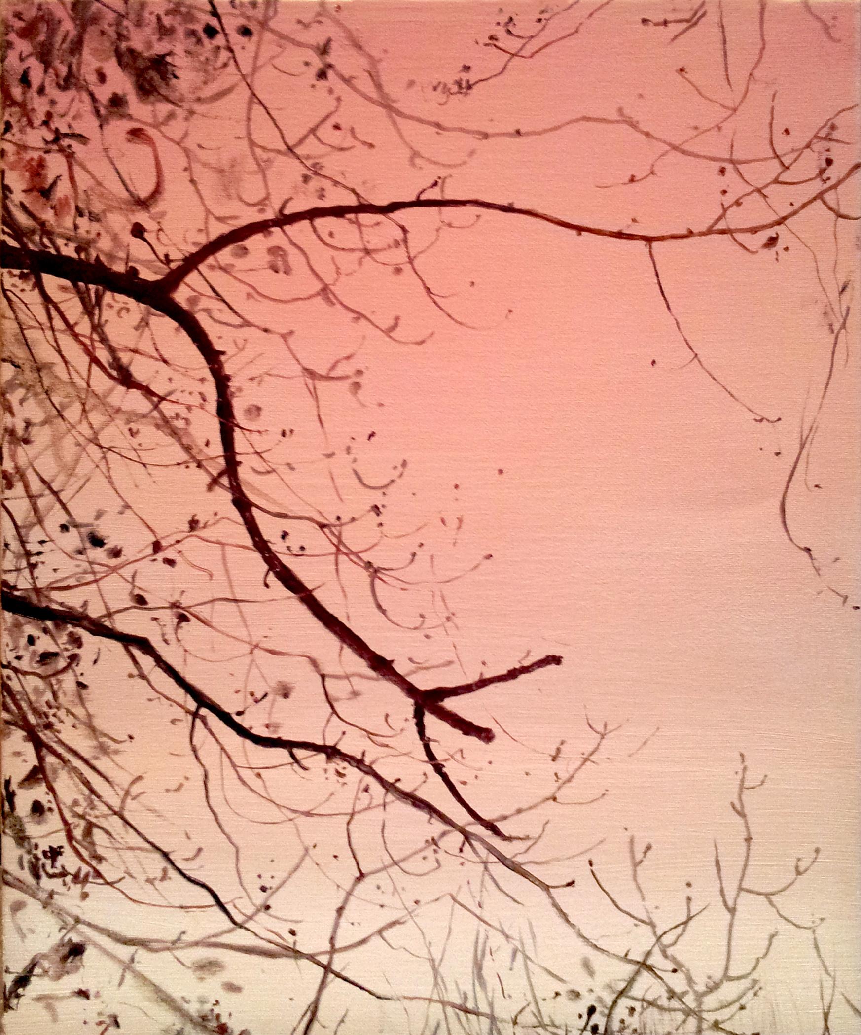 Branch 5