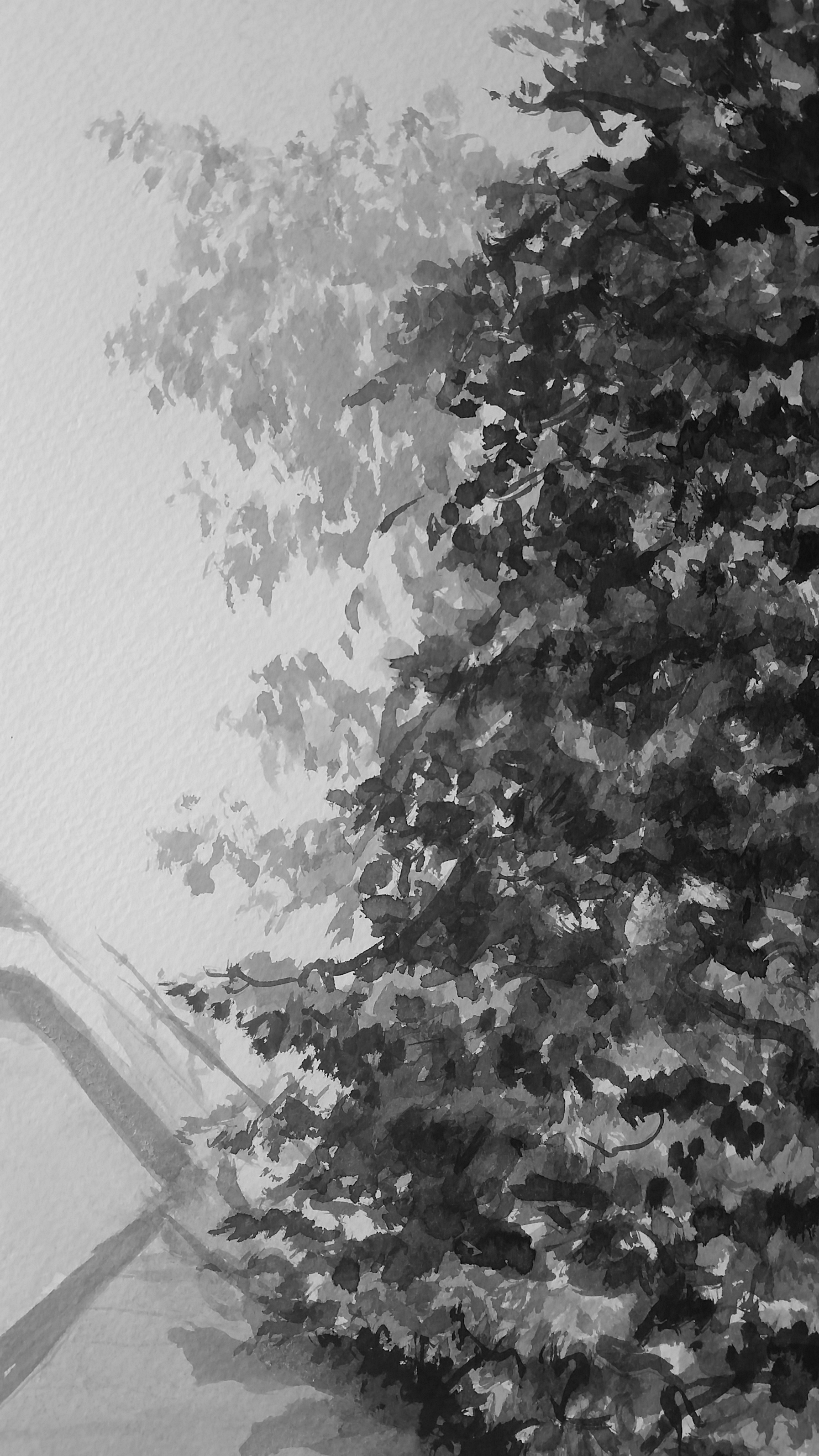 Pierce Street Pine detail