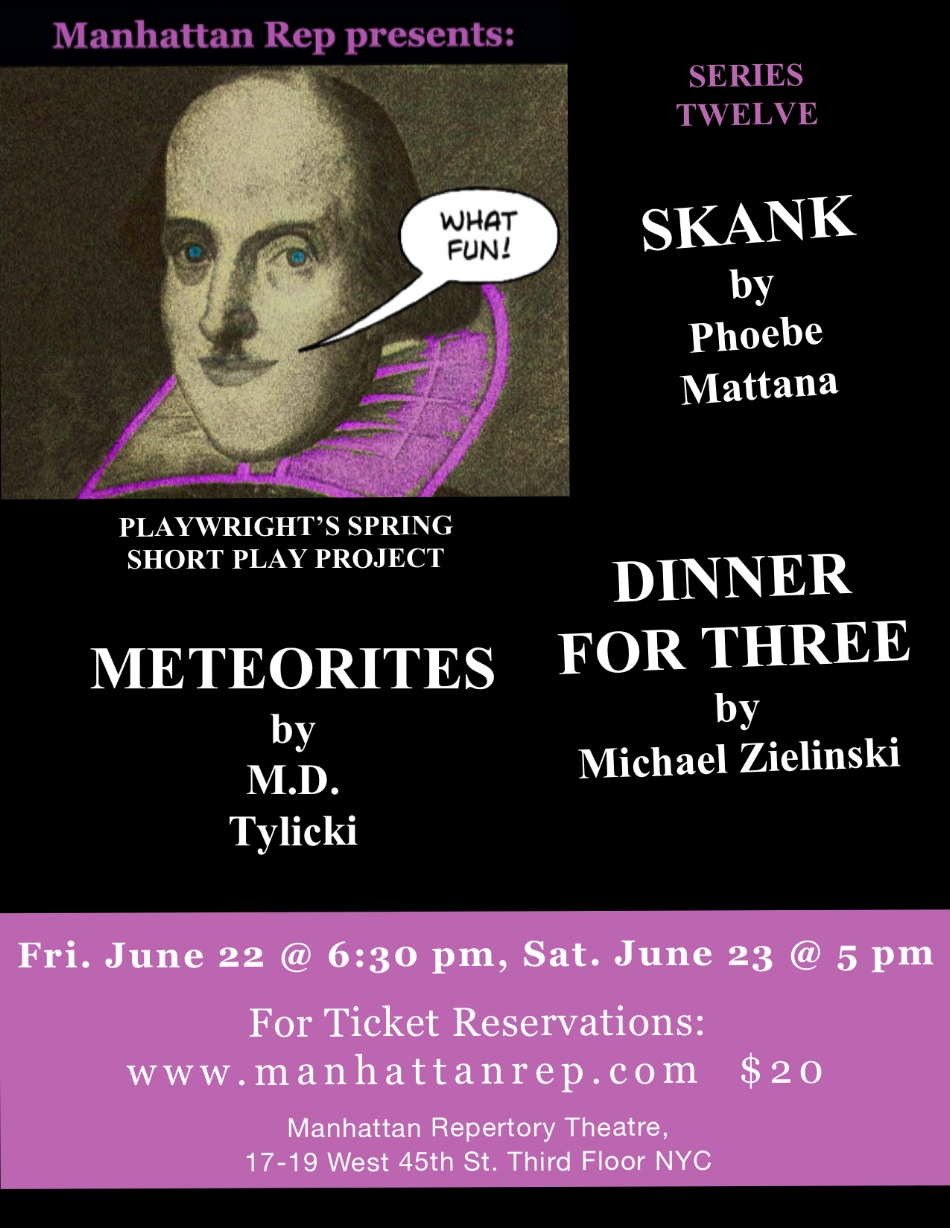 PLAYWRIGHTS PLAY PROJECT SERIES 12 .jpeg