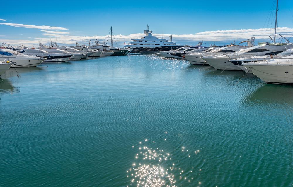 Yacht Organization