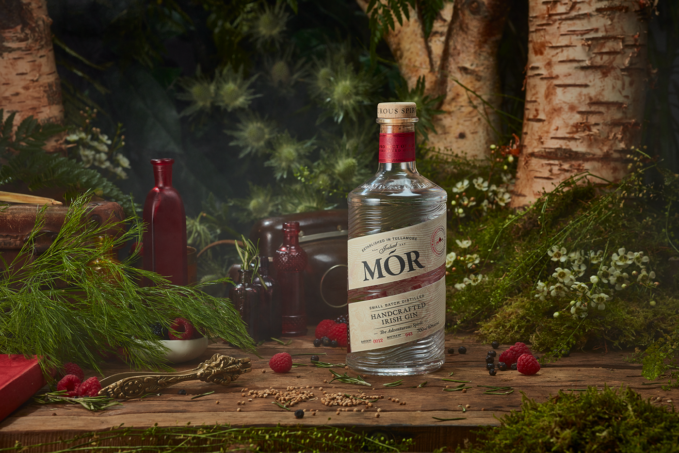 Irish Brand and Packaging Design for Wild Berry Gin / World Brand & Packaging Design Society