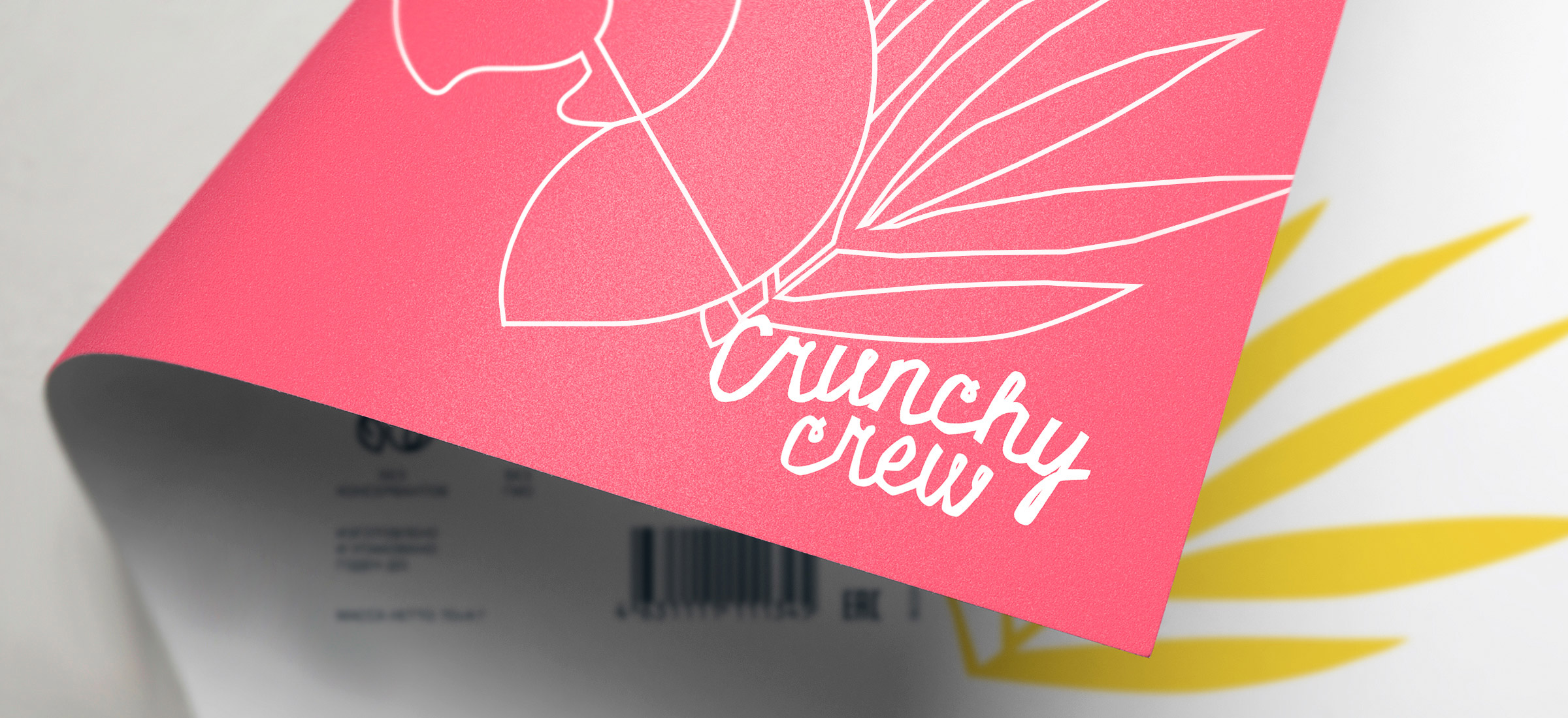 Naming, Logo and Packaging Design for Crunchy Crew Fruit Chips / World Brand Design Society