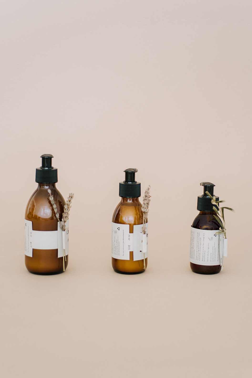 Sustainable Packaging for Del Montseny / World Brand Design Society