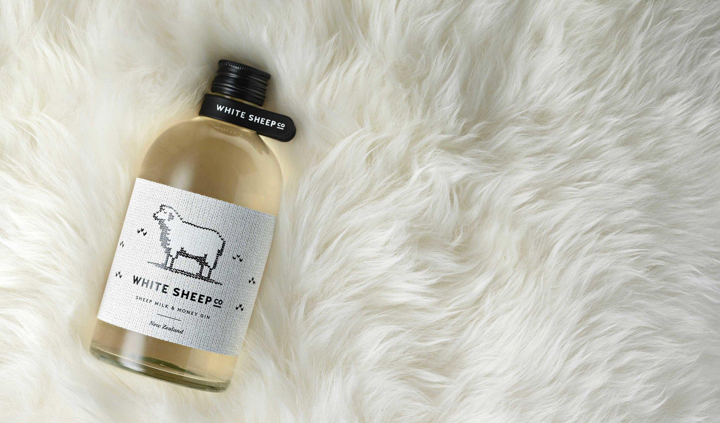 Curious Design - White Sheep Co.3.jpg
