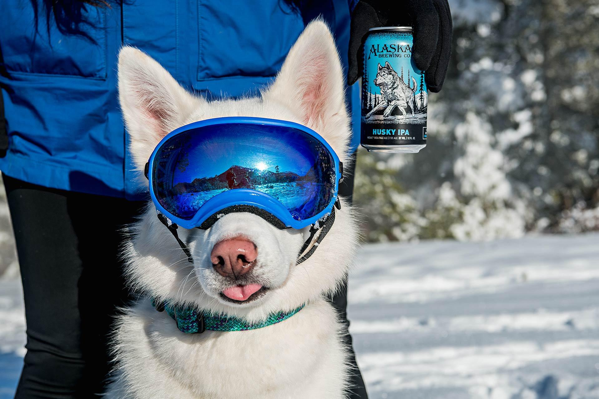 Blindtiger Design - Alaskan Brewing Co.16.jpeg