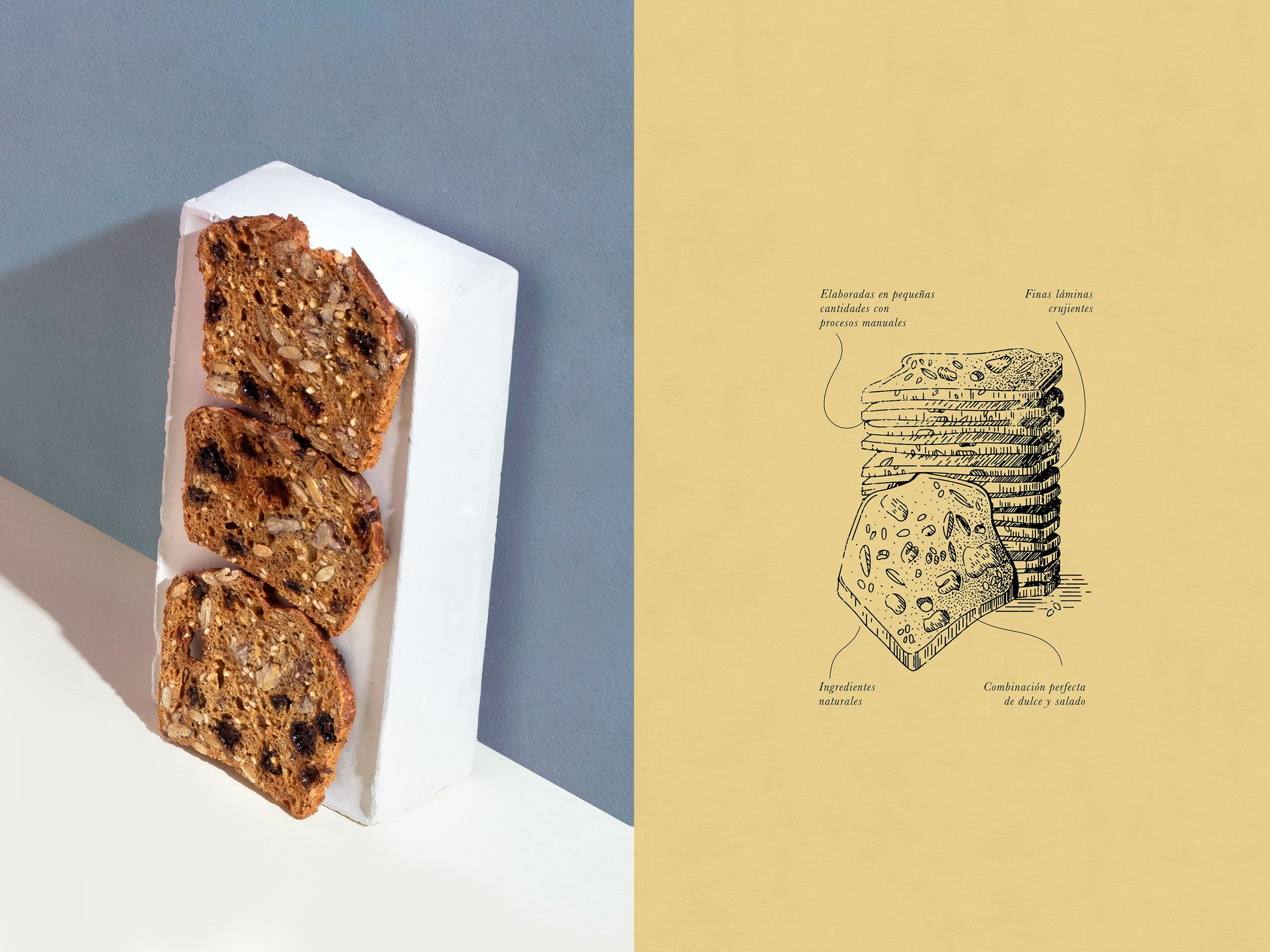 TORO PINTO - Breana´s Toast17.jpg