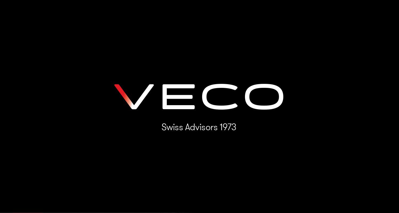 Autentic Consulting - VECO Group 1.jpg