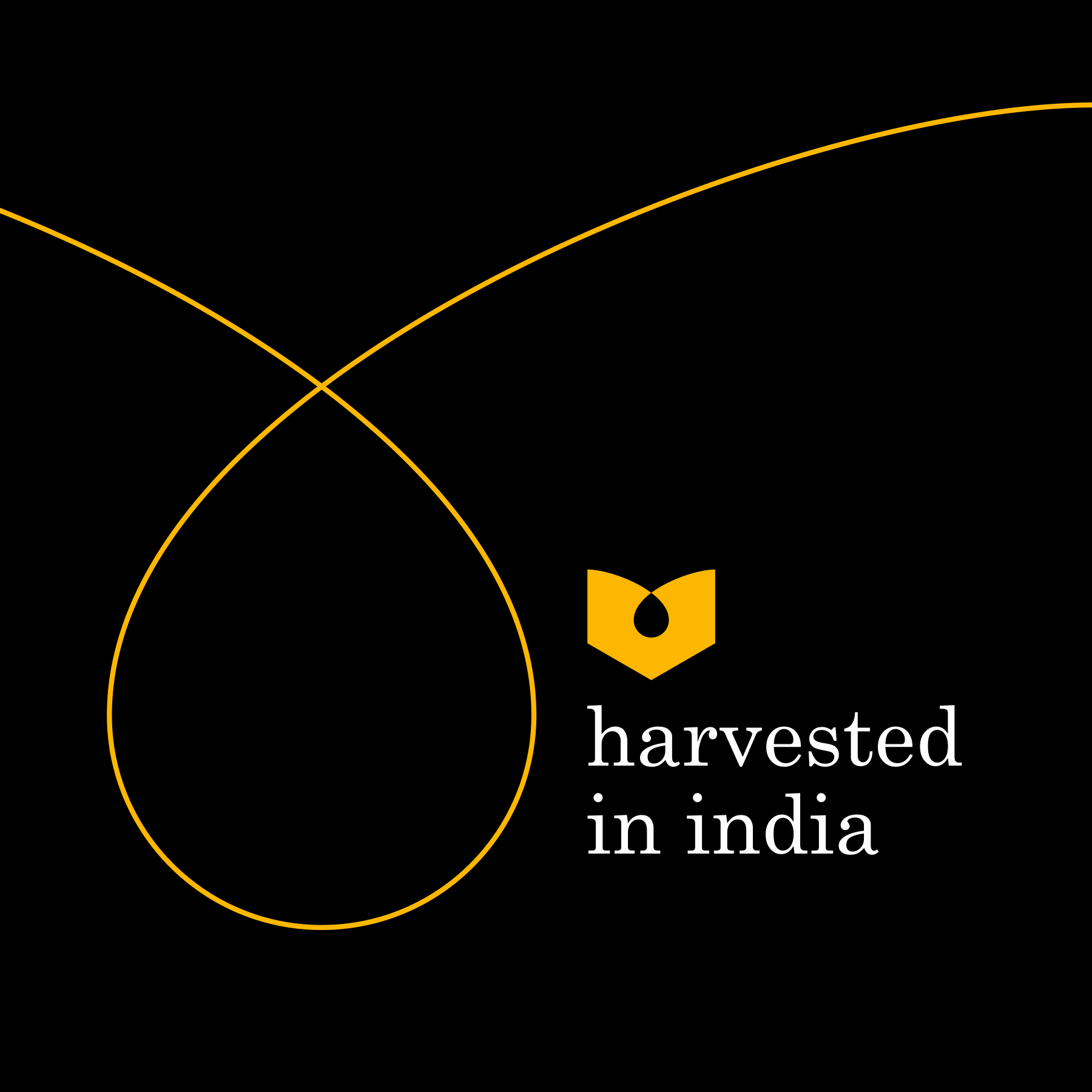 3 dhaval modi meraki honey packaging designer ahmedabad.png
