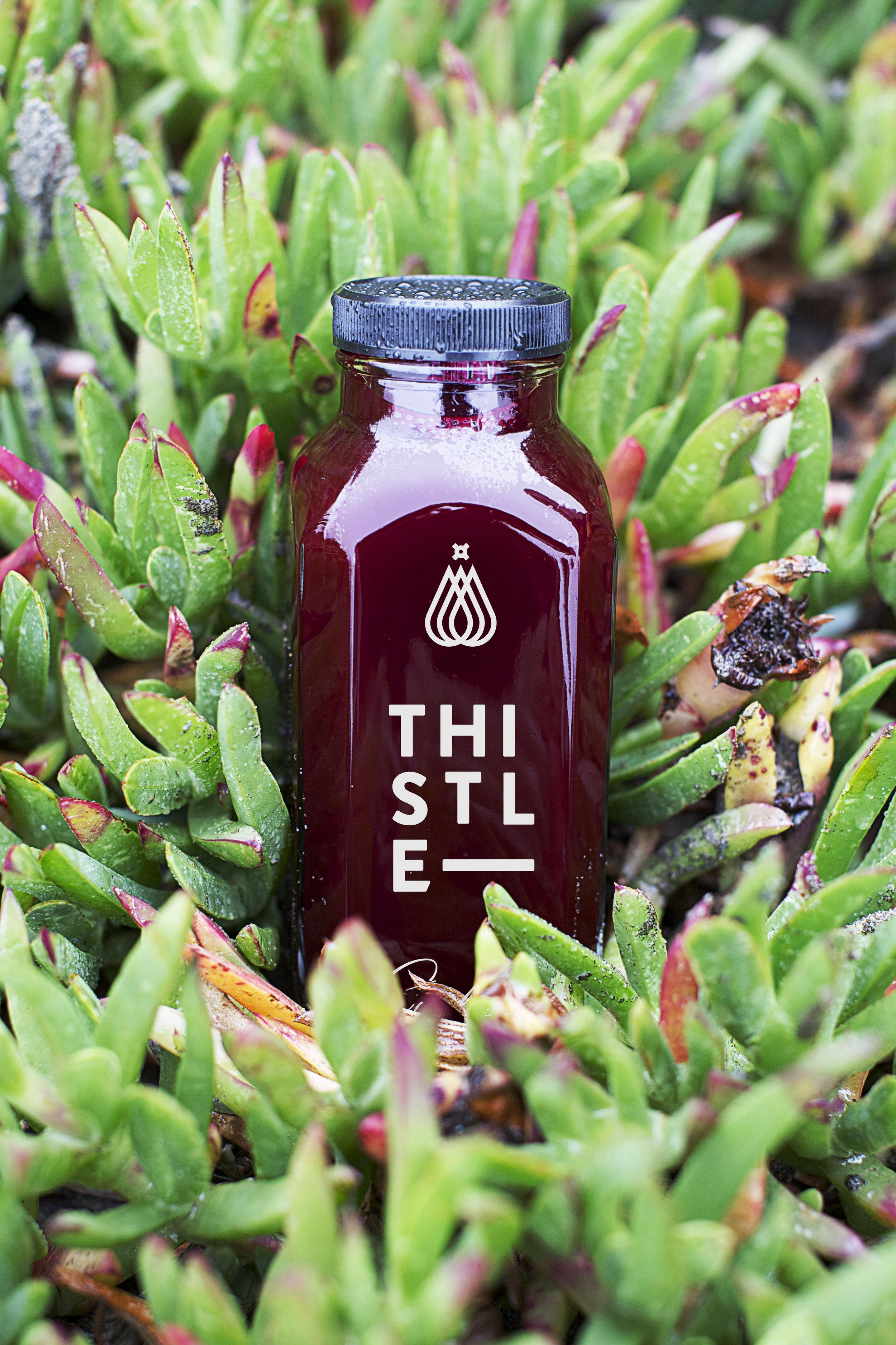 Thistle_Bottle_Beet_v01.jpg