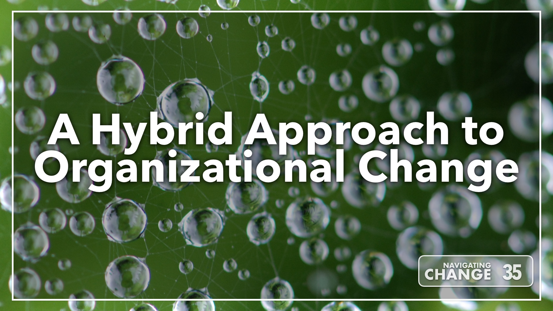 Listen to A Hybrid Approach to Organizational Change on Navigating Change The Education Podcast