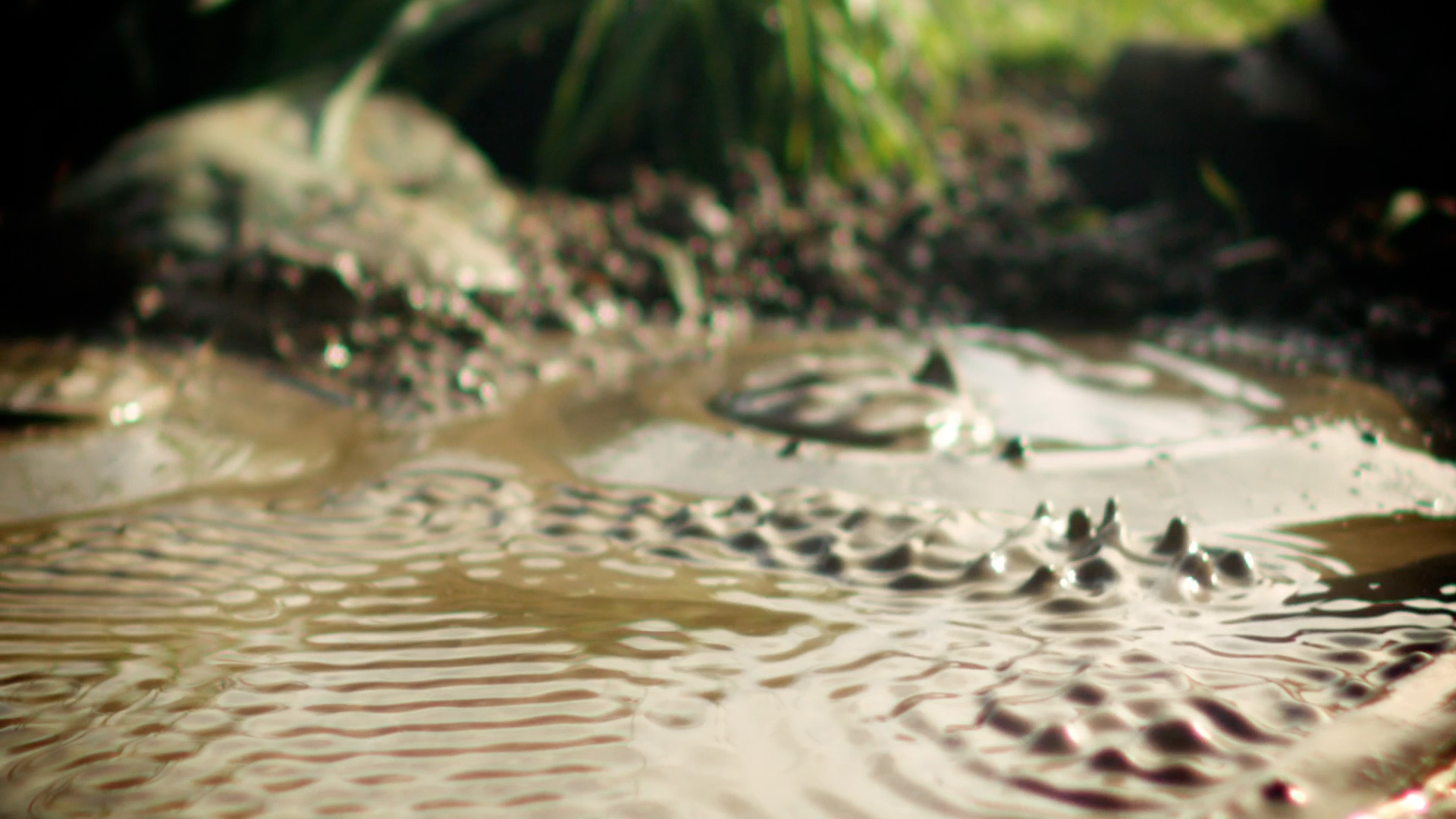 Mud9.jpg