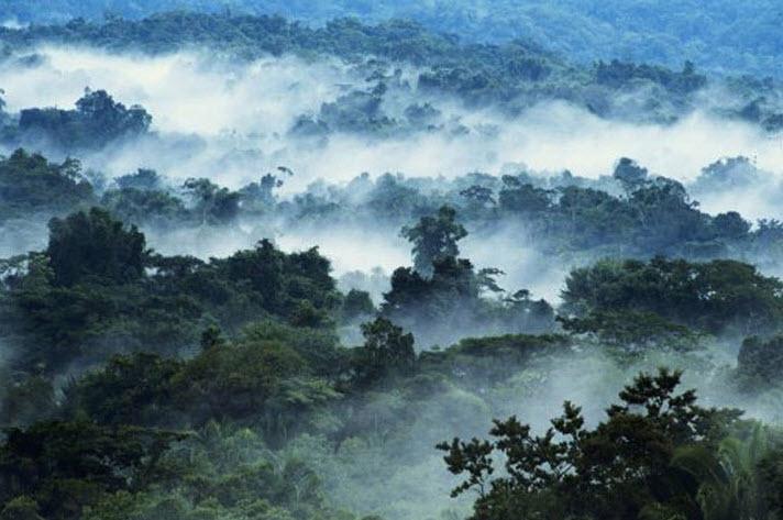Mayan Mountains.jpg