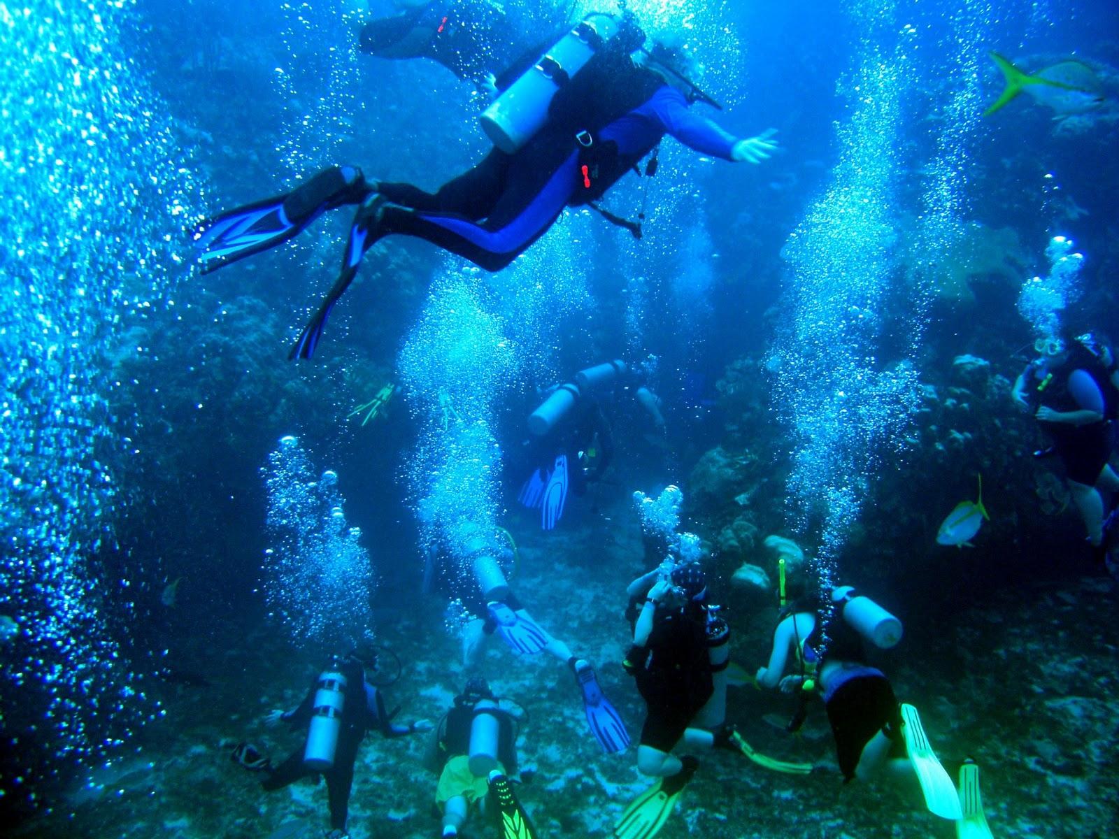 Scuba Diving in Belize.jpg