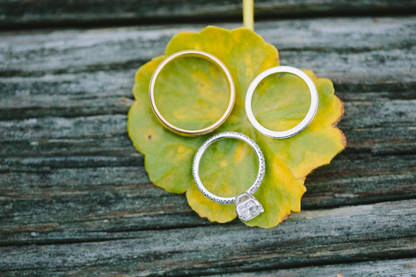 three-rings-photo-before-wedding-on-leaf