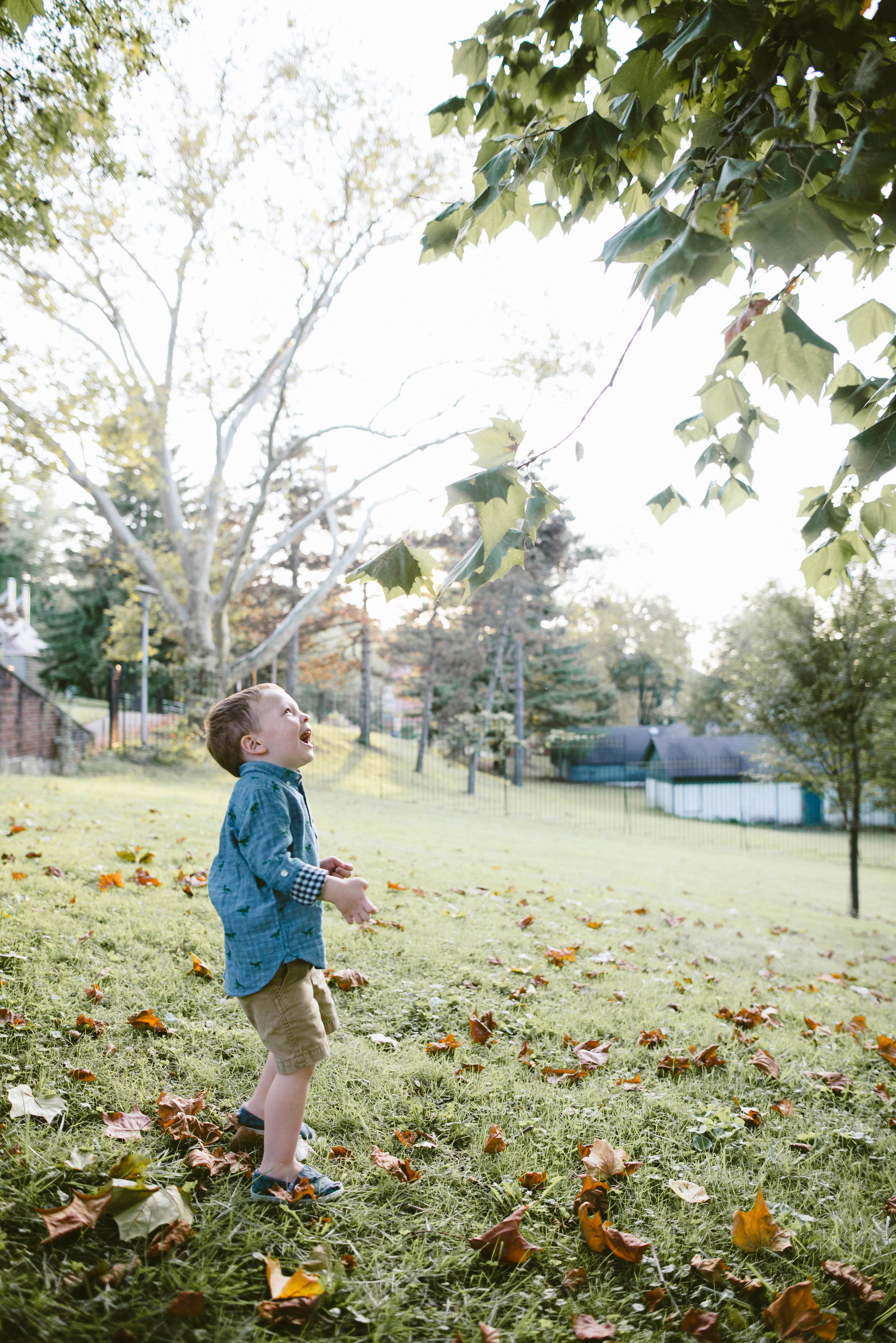 mellon park photos-12.jpg