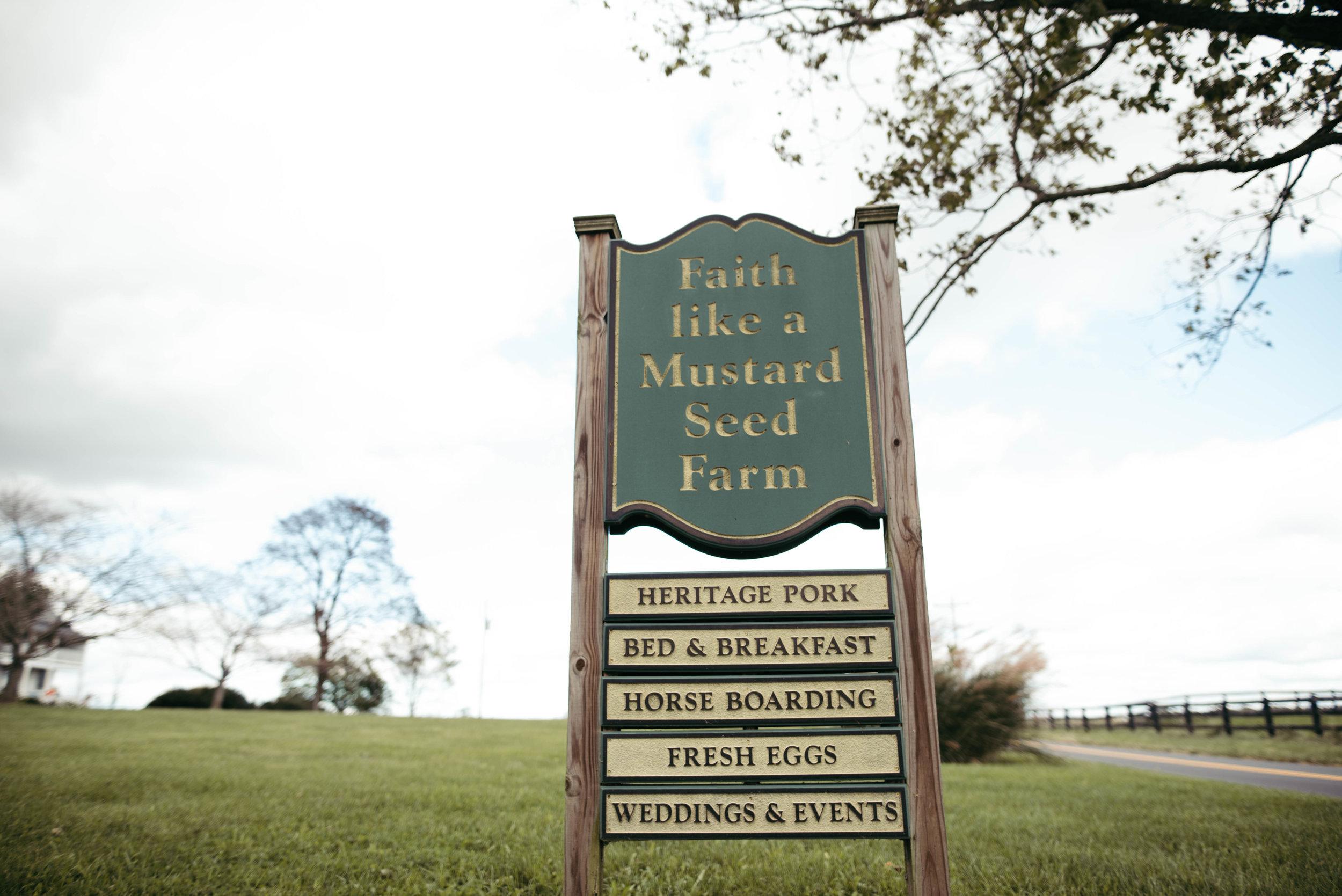 Faith like a mustard seed farm wedding-11.jpg