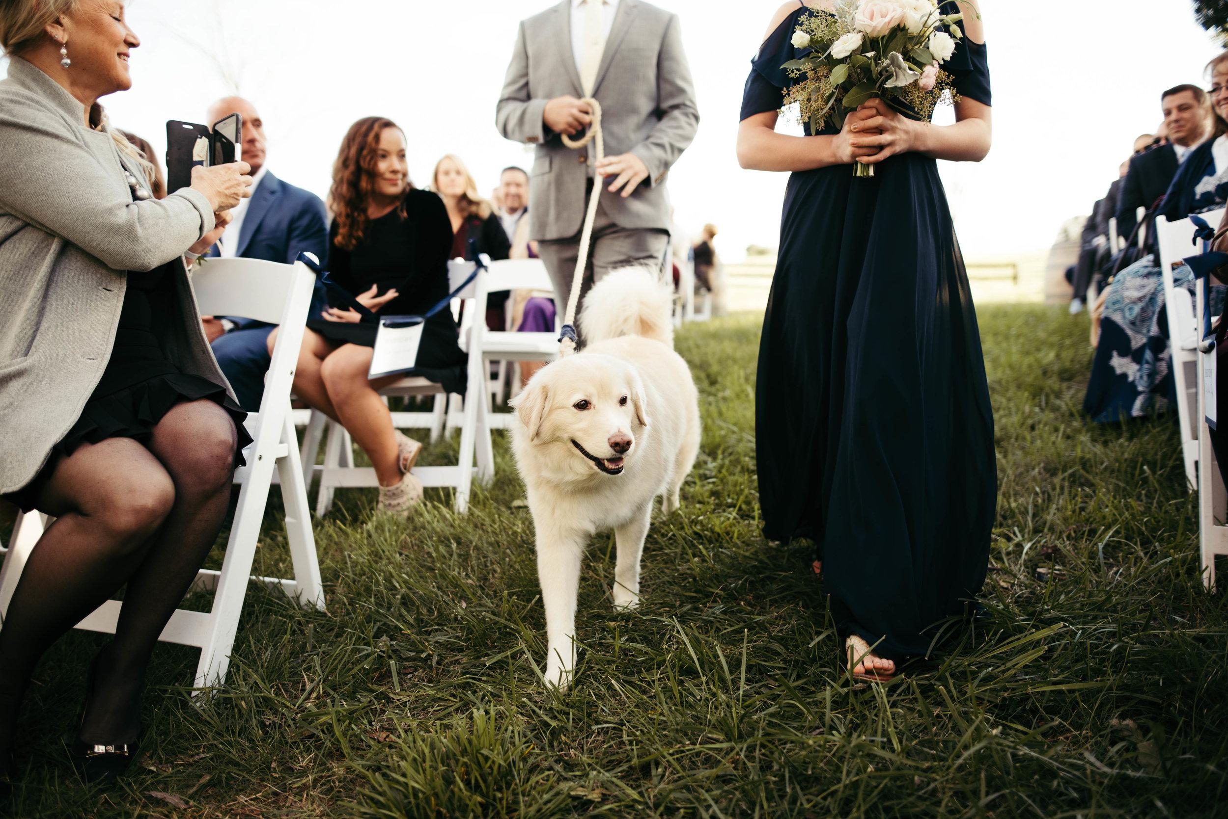 Faith like a mustard seed farm wedding-33.jpg