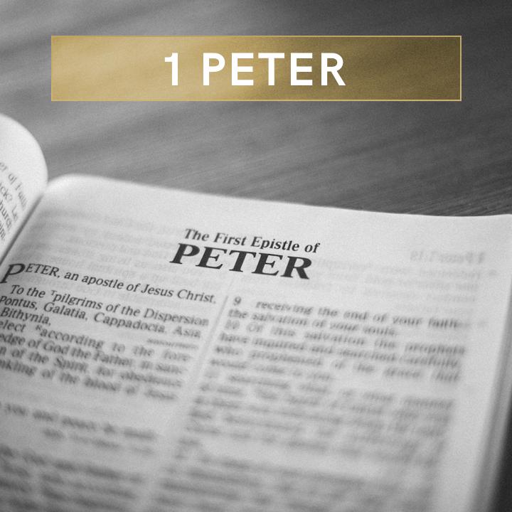 1 Peter SQ.png