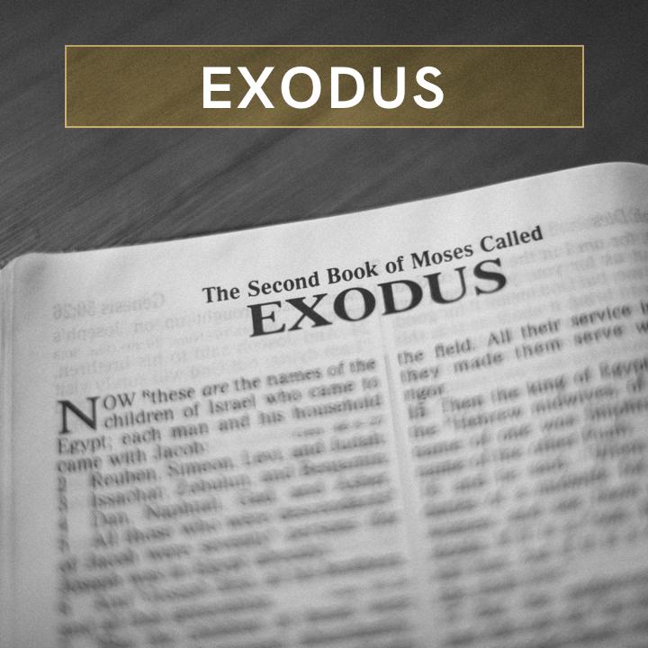 Exodus SQ.png