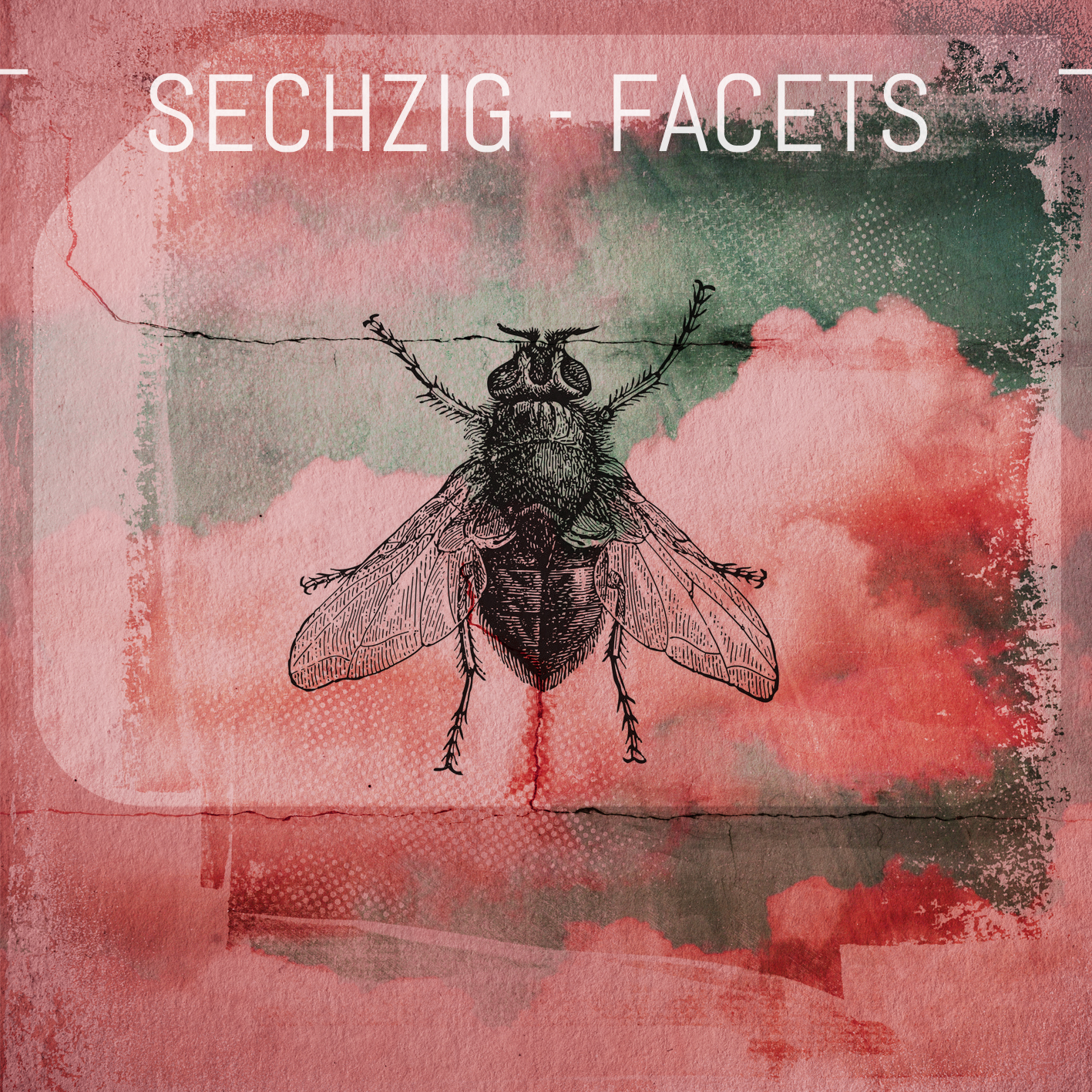 DMD012 - Sechzig - Facets