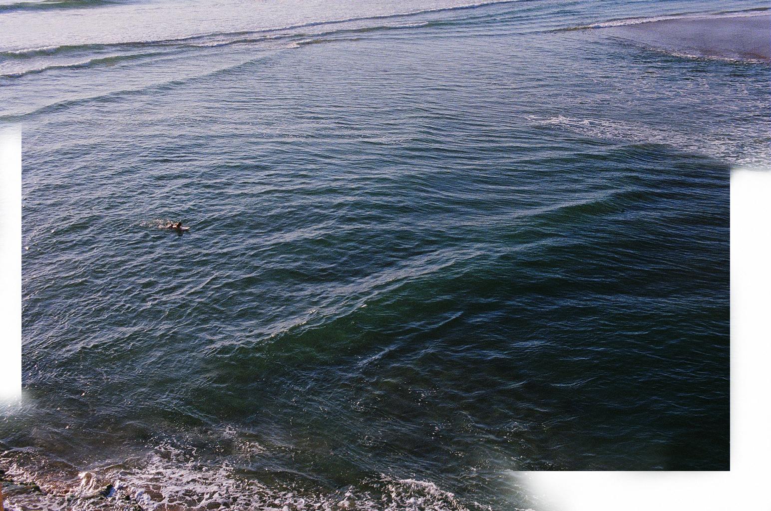 danae surf.jpg