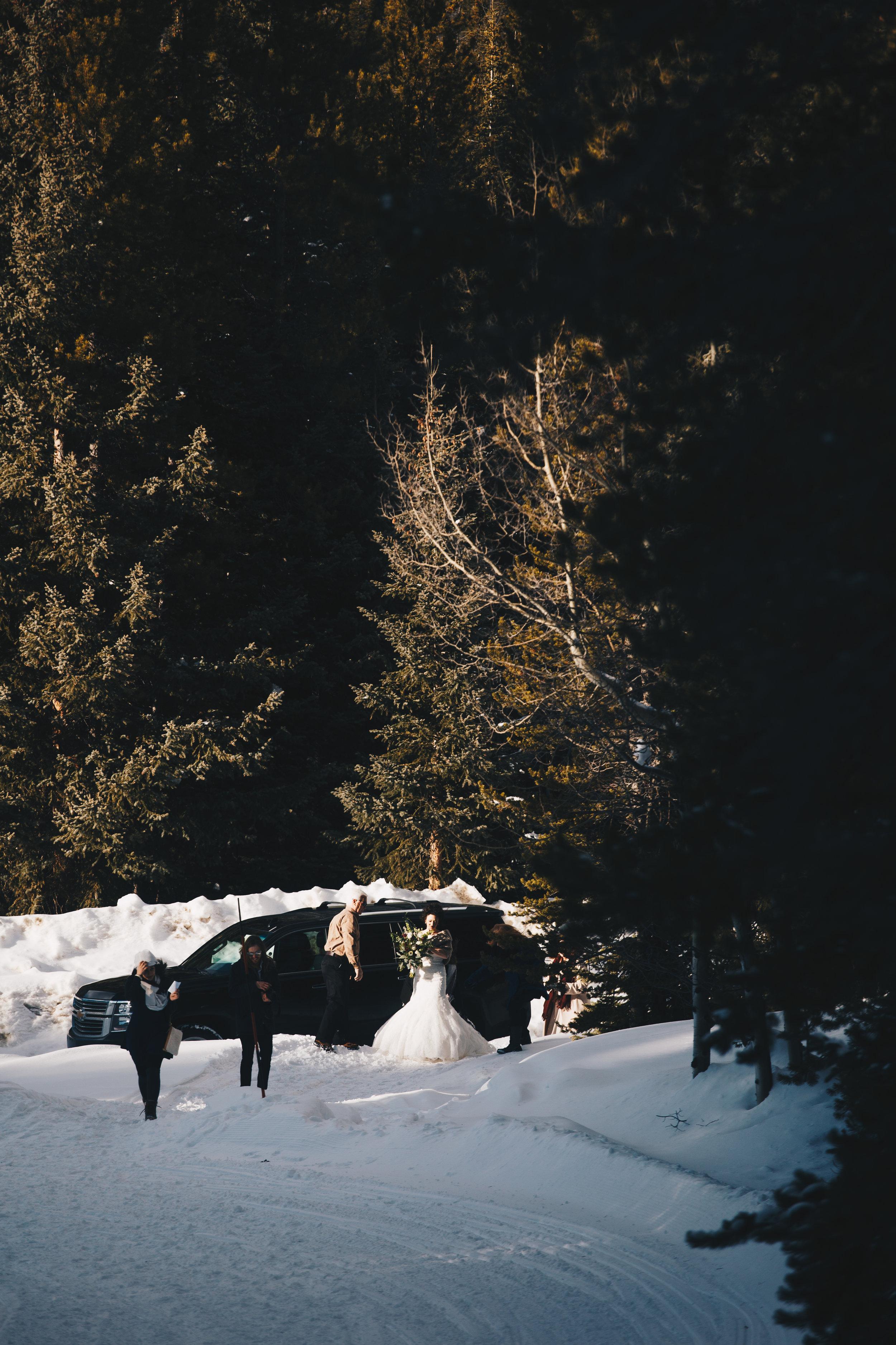 winter-park-wedding