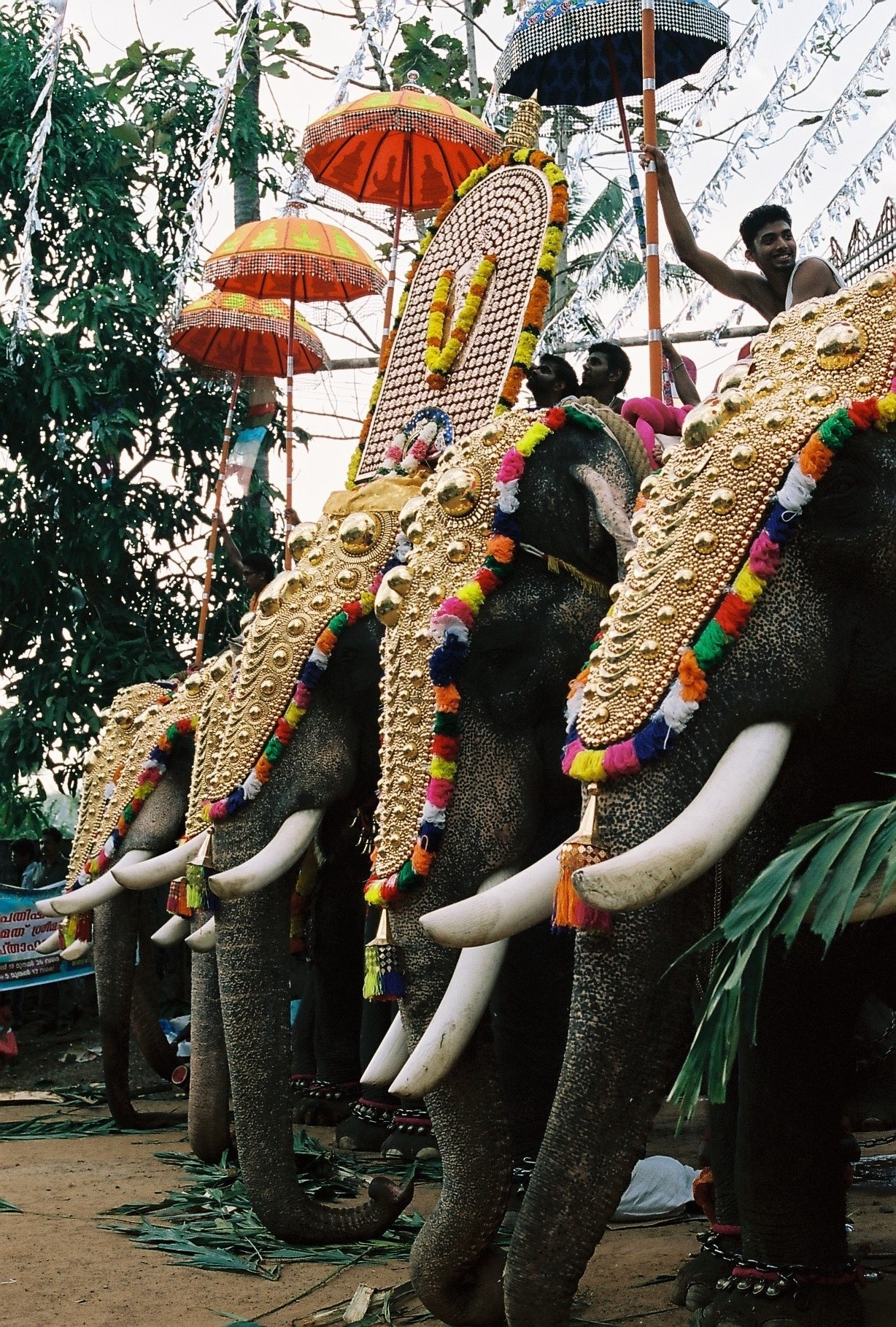 Temple festival. India