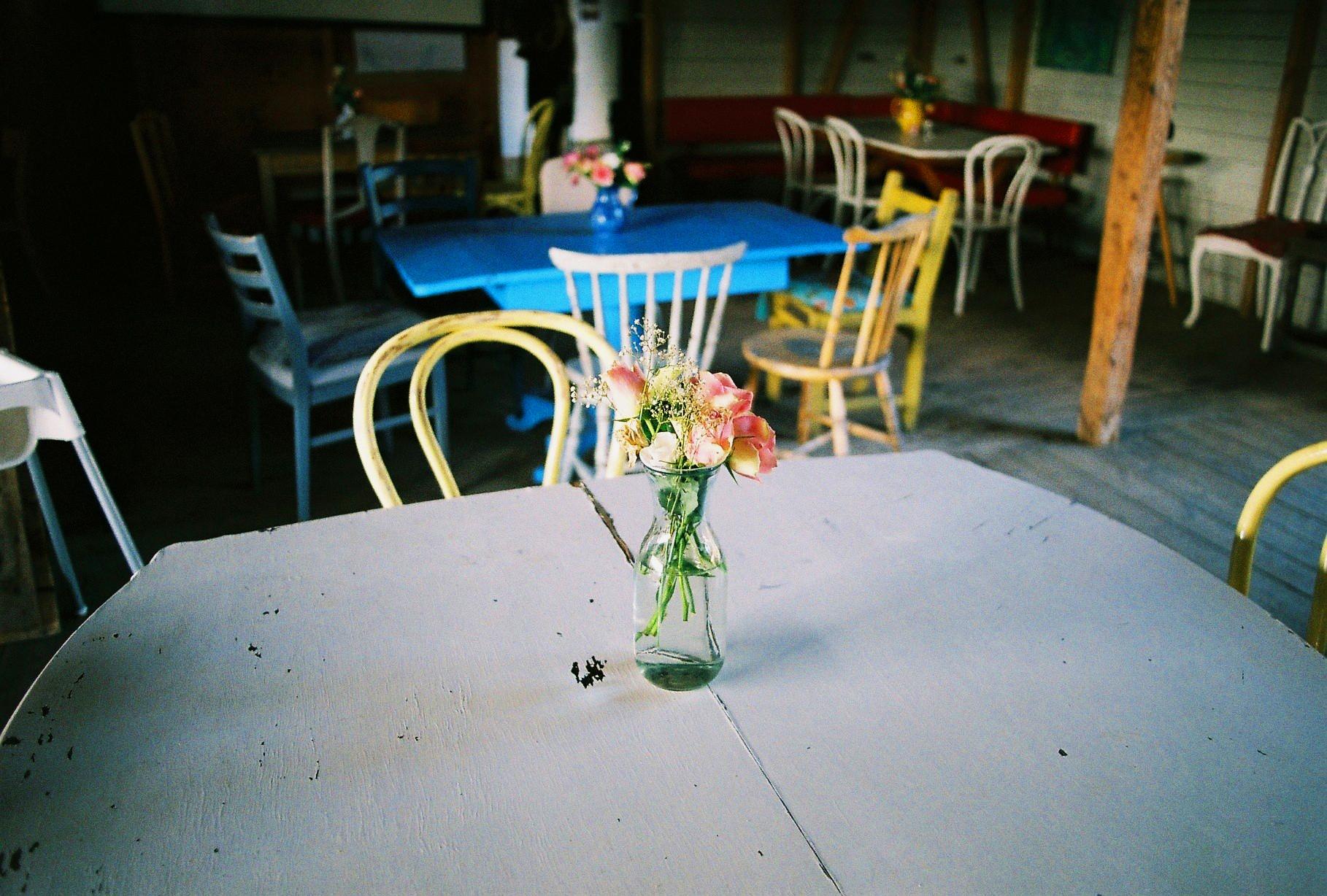 Flowers. Rosenhill