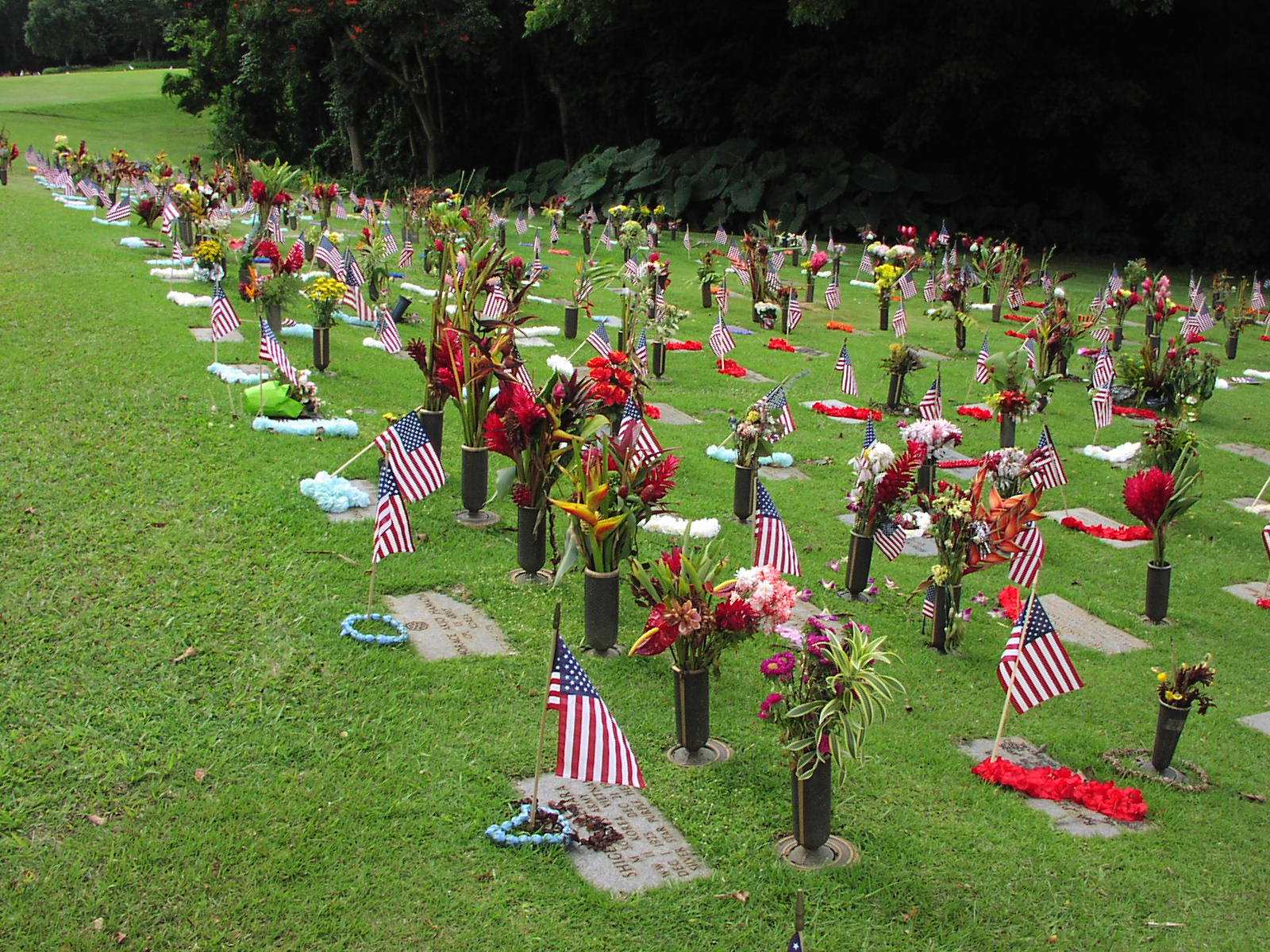 Above: A photo example of what Memorial Day looks like in Hawaii.
