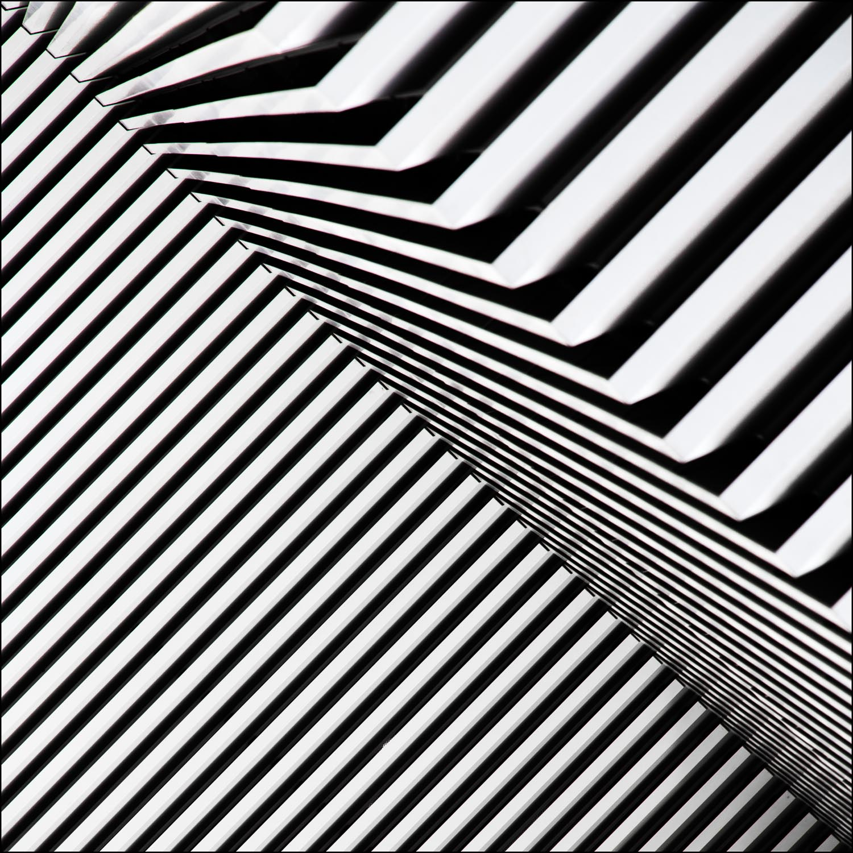black and white naturally 1.jpg