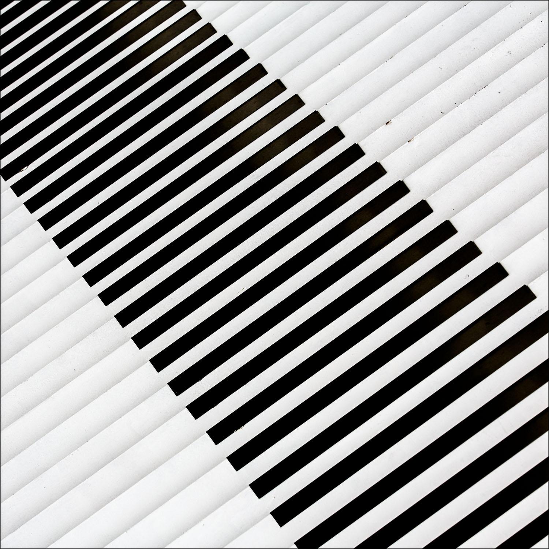 black and white naturally 3.jpg