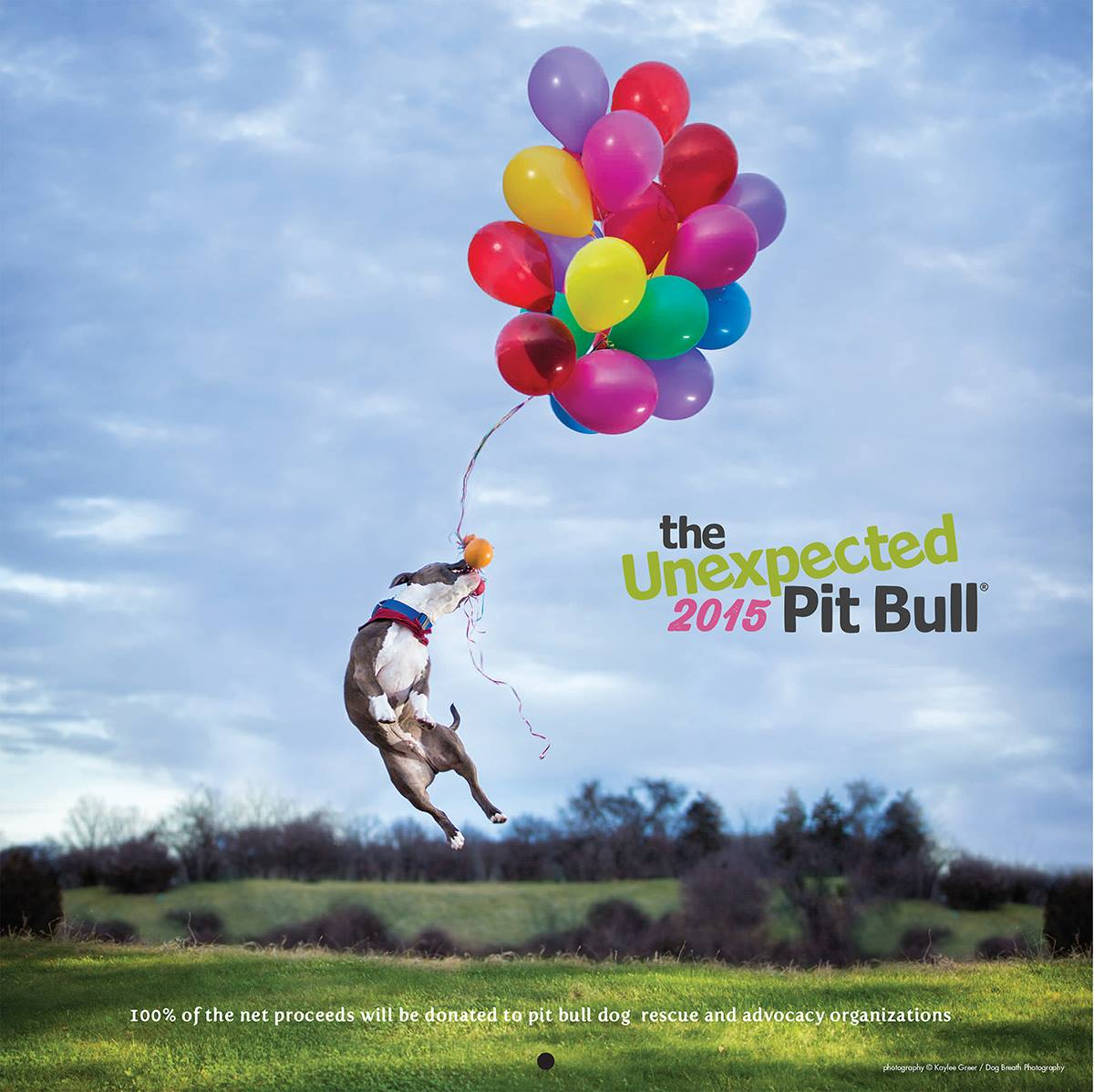 Cover Image for The Unexpected Pit Bull's 2015 calendar