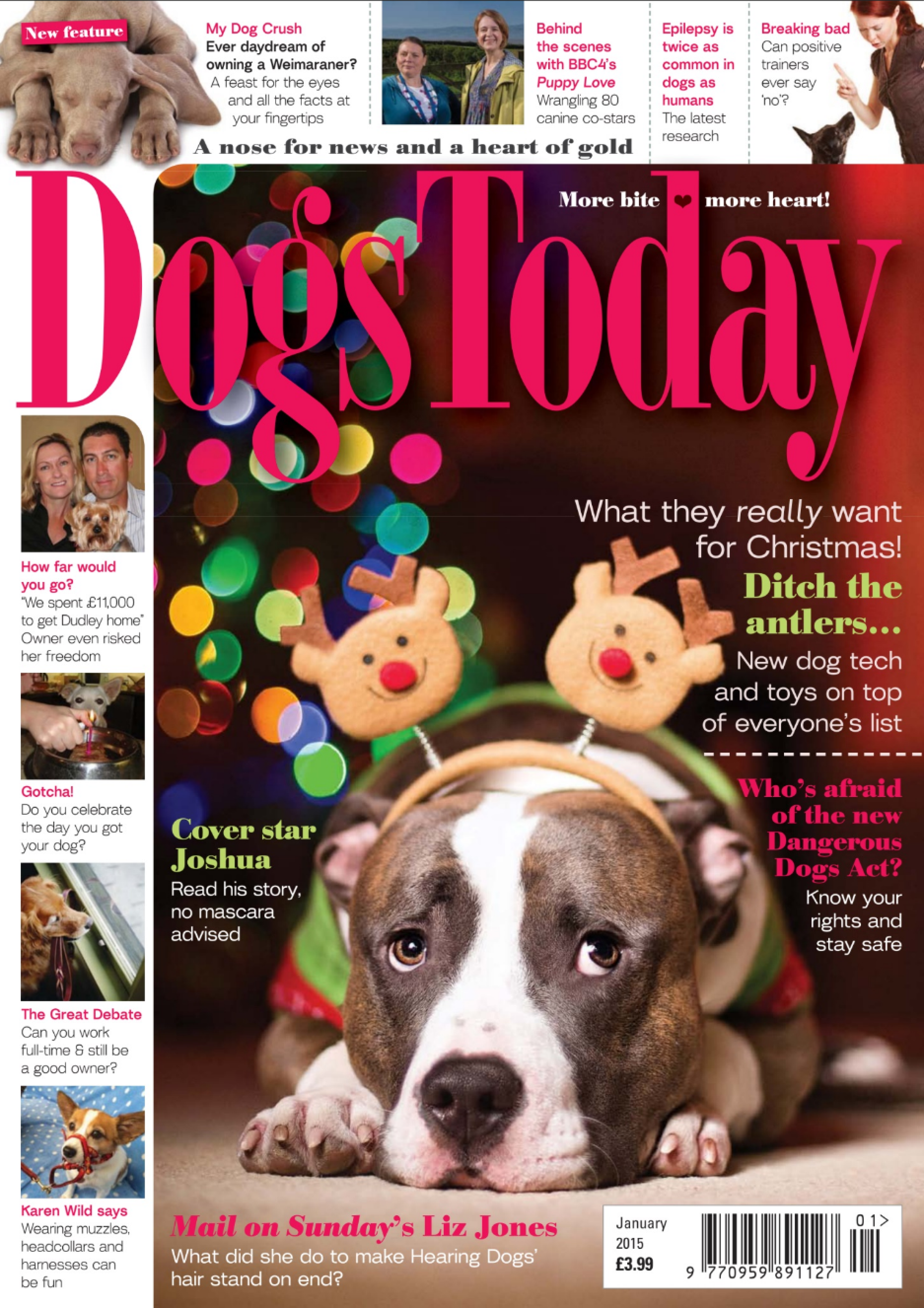Cover Image - Dogs Today Magazine January 2015