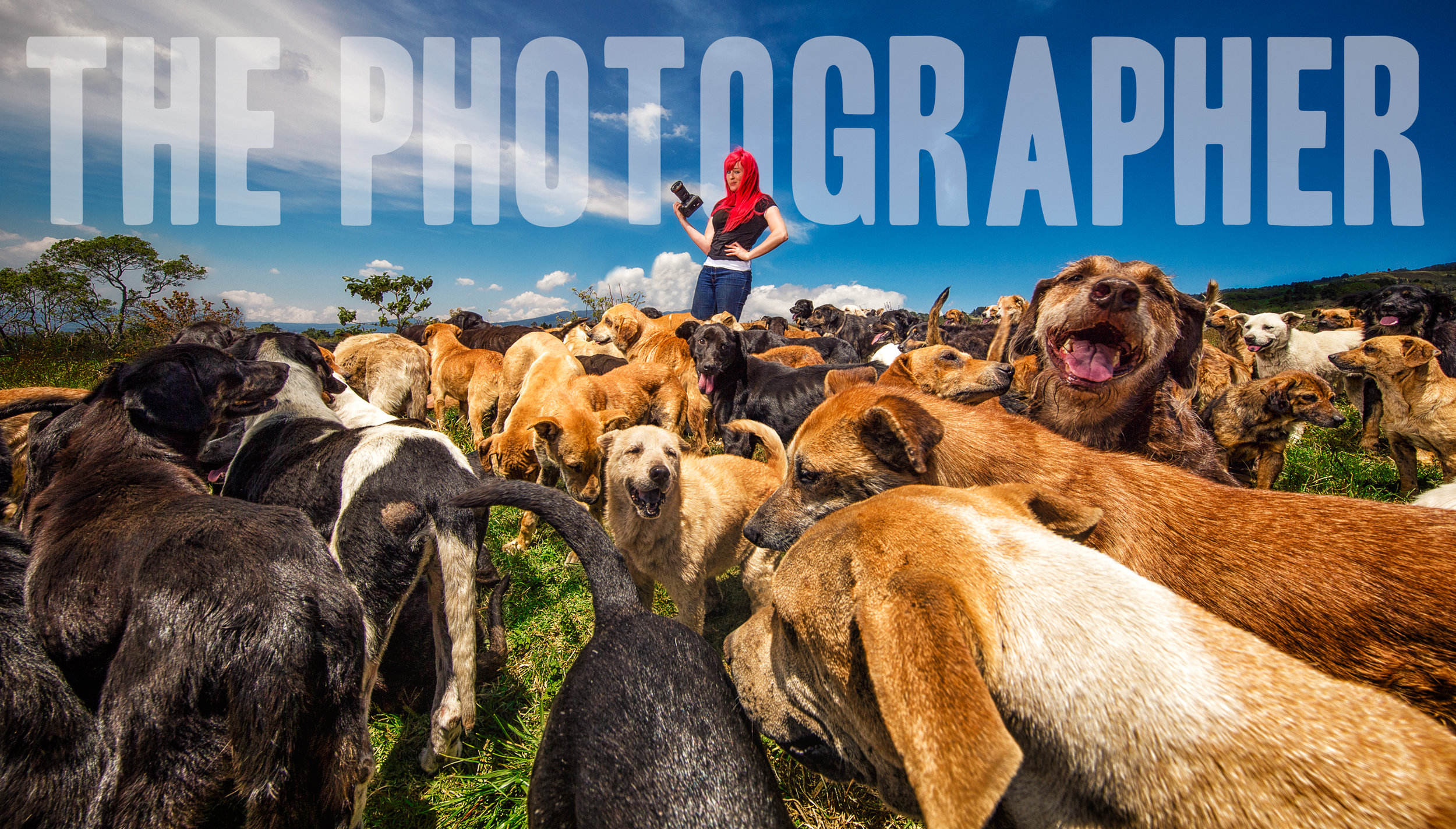 Kaylee at Territorio de Zaguates or 'Land of the Strays' in English, where over 800 homeless and abandoned dogs roam atop a mountain sanctuary in Alejuela, Costa Rica.