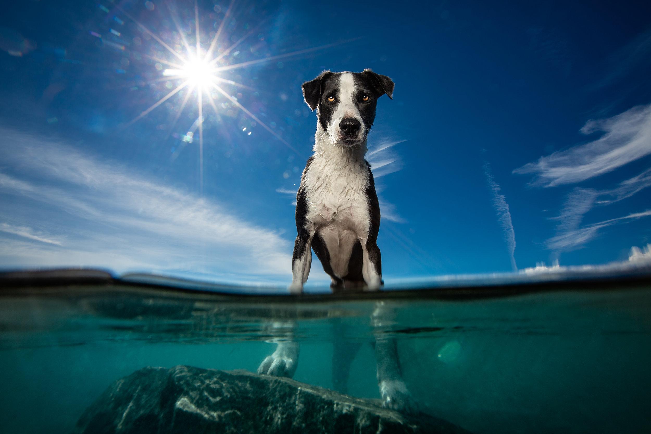 UnderwaterTekapo.jpg