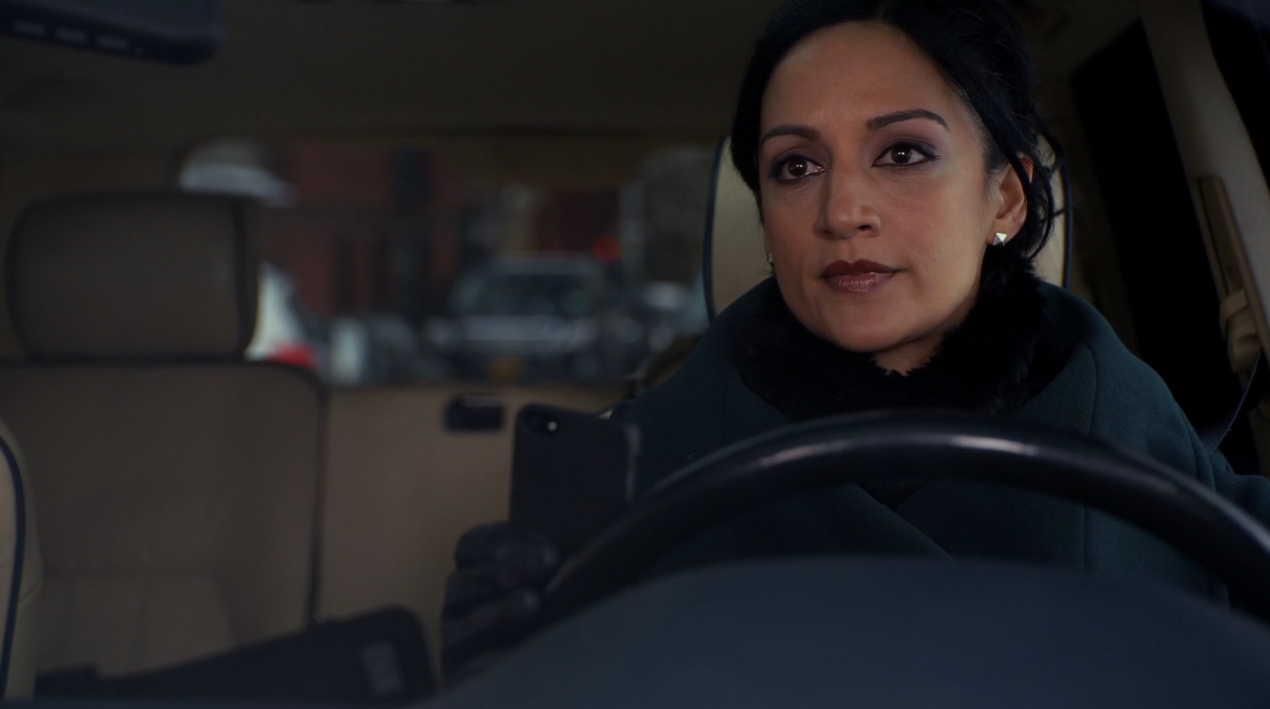 The Good Wife Driving Plates 04.png