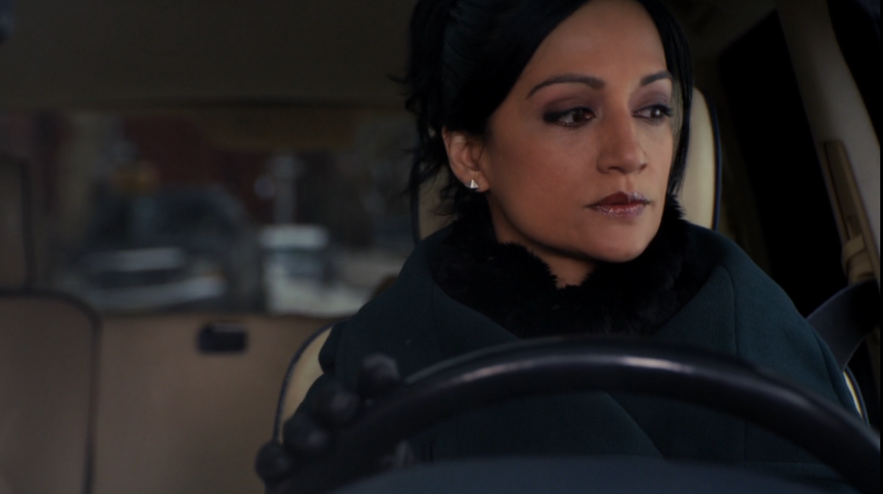 The Good Wife Driving Plates 06.png