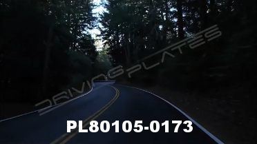 Vimeo clip HD & 4k Driving Plates Redwood Forest, CA PL80105-0173