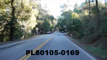 Vimeo clip HD & 4k Driving Plates Redwood Forest, CA PL80105-0169