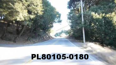 Vimeo clip HD & 4k Driving Plates Redwood Forest, CA PL80105-0180