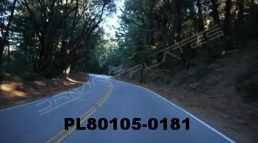Vimeo clip HD & 4k Driving Plates Redwood Forest, CA PL80105-0181