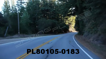 Vimeo clip HD & 4k Driving Plates Redwood Forest, CA PL80105-0183