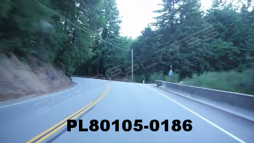 Vimeo clip HD & 4k Driving Plates Redwood Forest, CA PL80105-0186